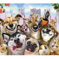 Zvieracie selfie - Micro
