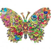 Motýlí kaleidoskop